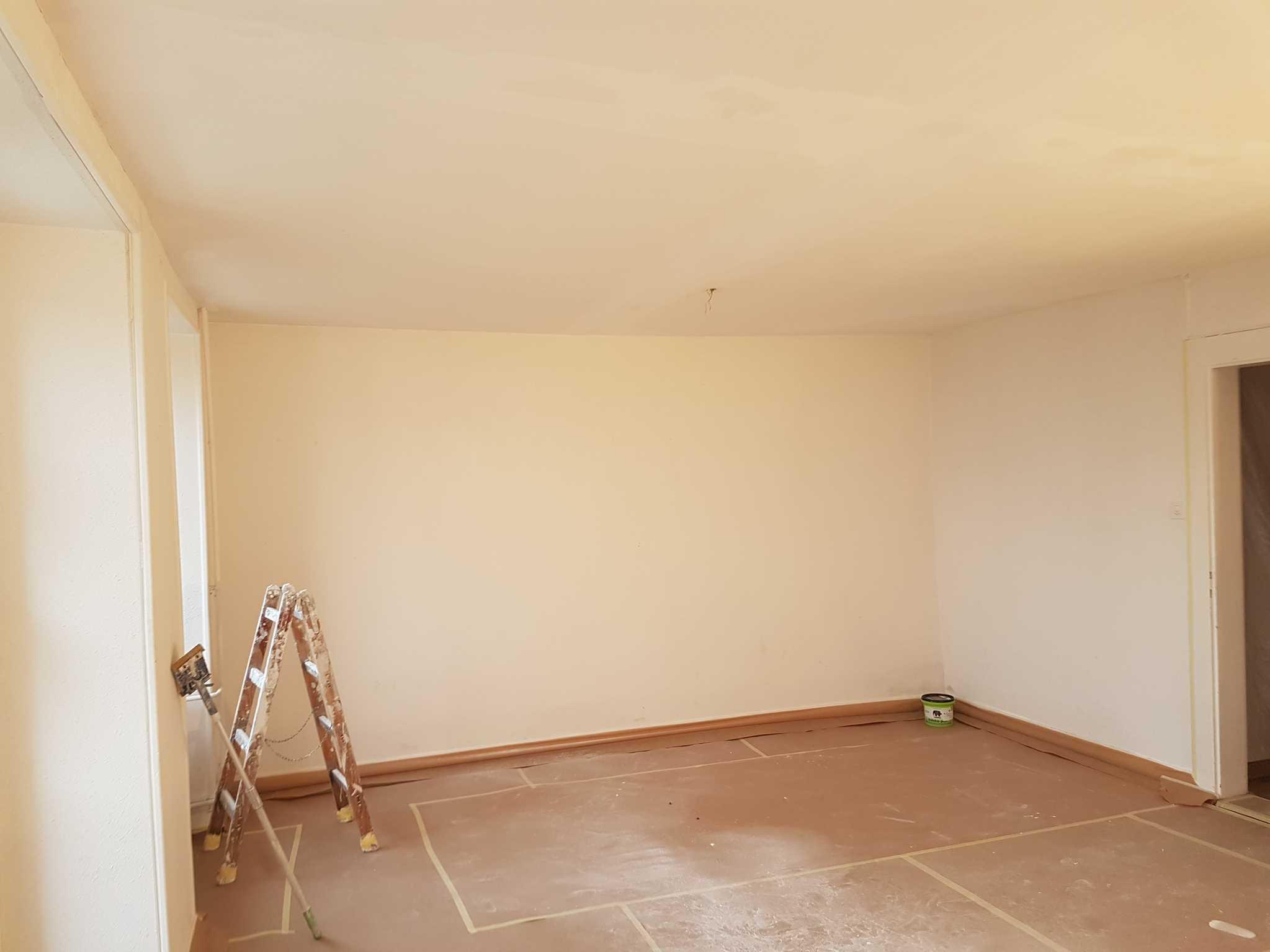 Peinture renovation b timents travaux publics for Peinture de renovation
