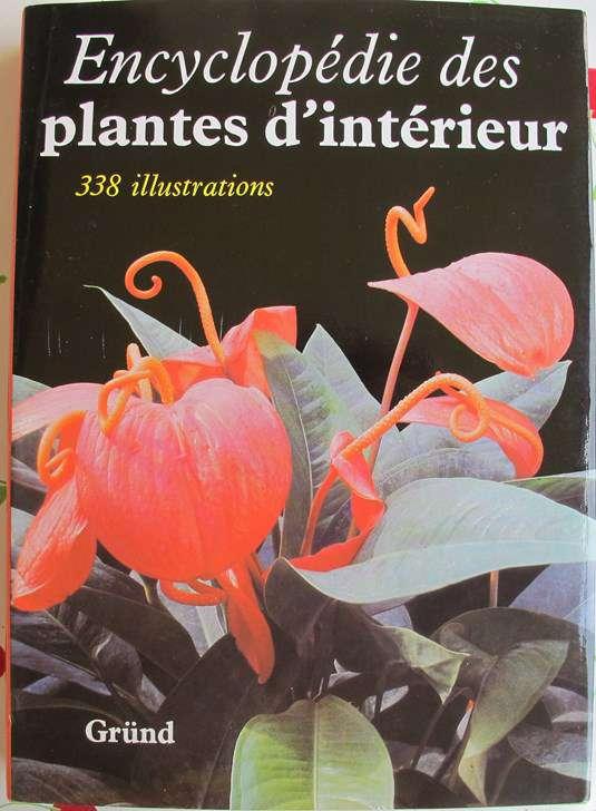 Encyclopédie des Plantes d' Intérieur