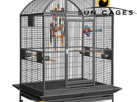 lausanne perroquet ara petites annonces gratuites occasion acheter vendre sur. Black Bedroom Furniture Sets. Home Design Ideas