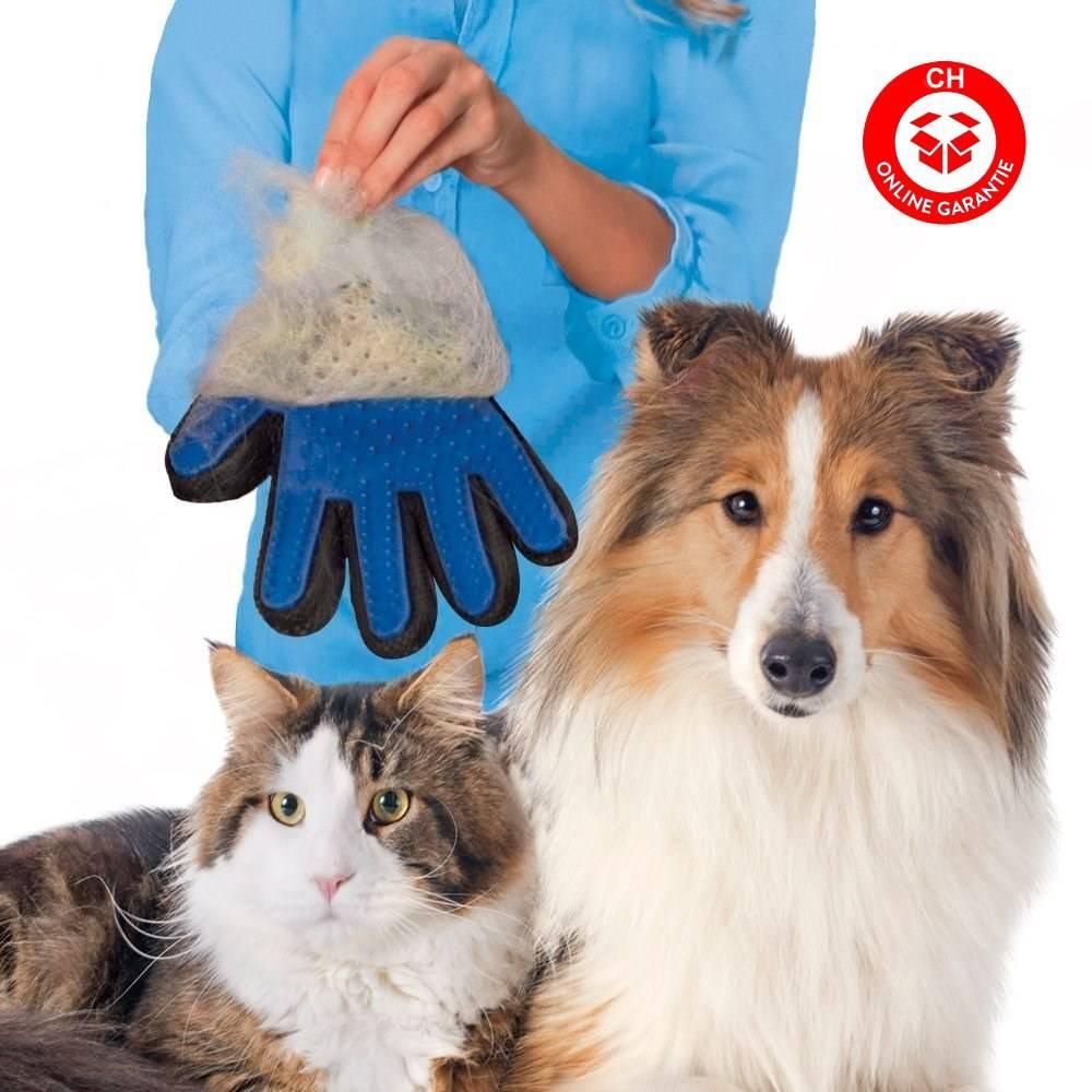 Katzen Katze Hunde Hund Tierhaar Handschuh