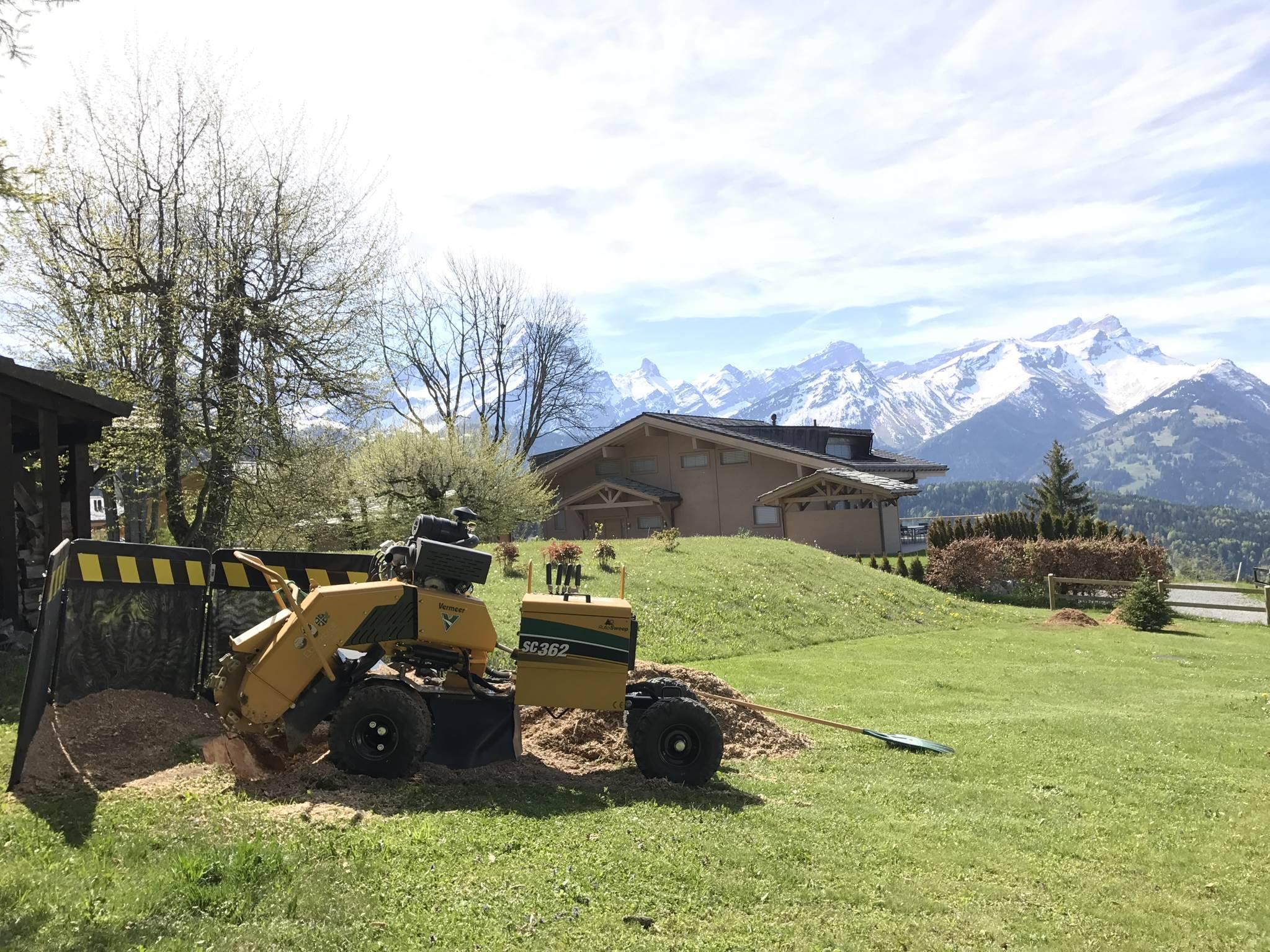 Elag 39 arbres s rl lagueur paysagiste travaux acro for Travaux de paysagiste