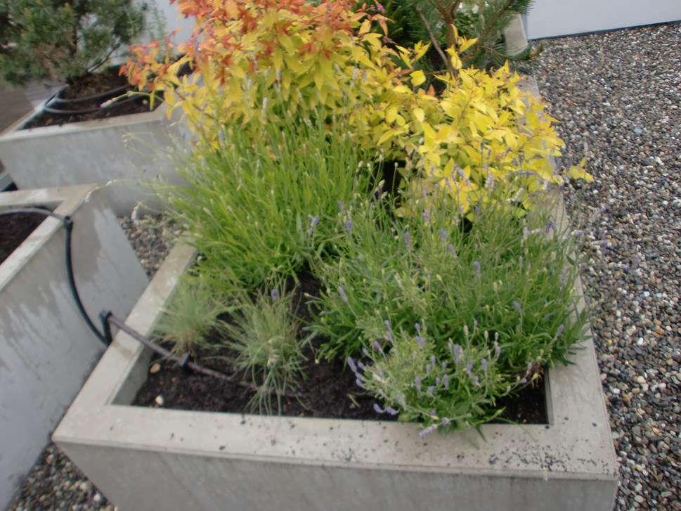 B j jardinier paysagiste services professionnels for Jardinier paysagiste