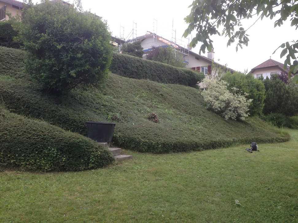 Entretien de jardins parcs potager services professionnels for Entretien de jardins