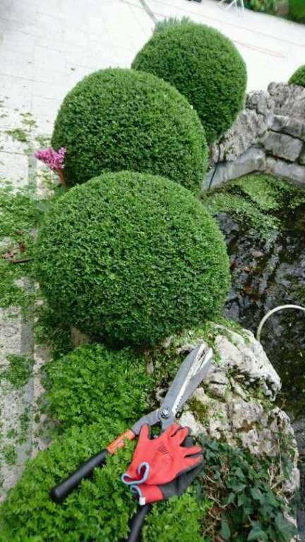 jardinier paysagiste devis gratuit b j services professionnels. Black Bedroom Furniture Sets. Home Design Ideas