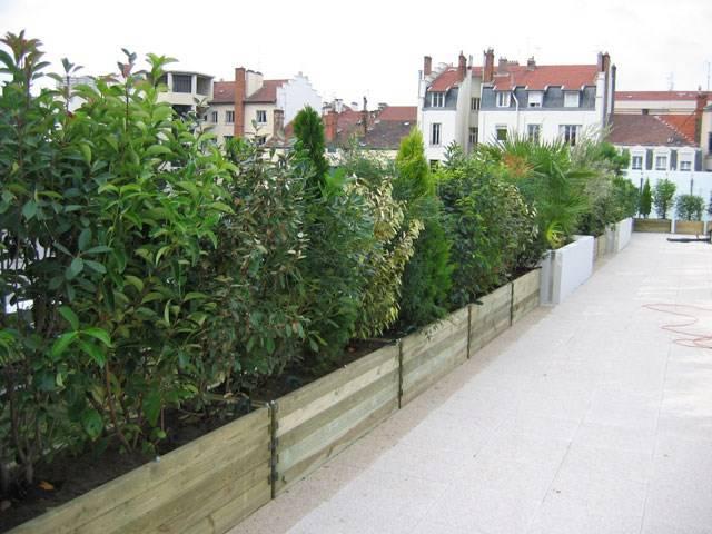 Jardinier paysagiste devis gratuit b j services for Jardinier professionnel
