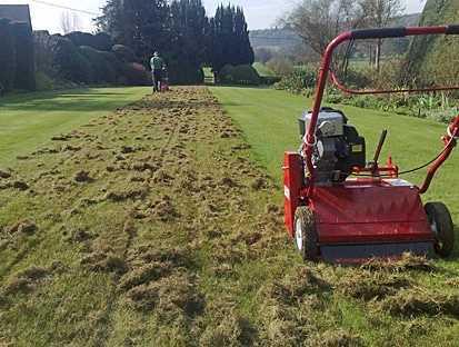 Scarification aeration pelous gazon engrais semis for Entretien pelouse prix