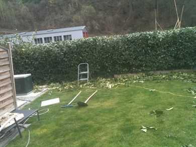 Travaux de jardinage tailles la haie jardinage for Travaux jardinage