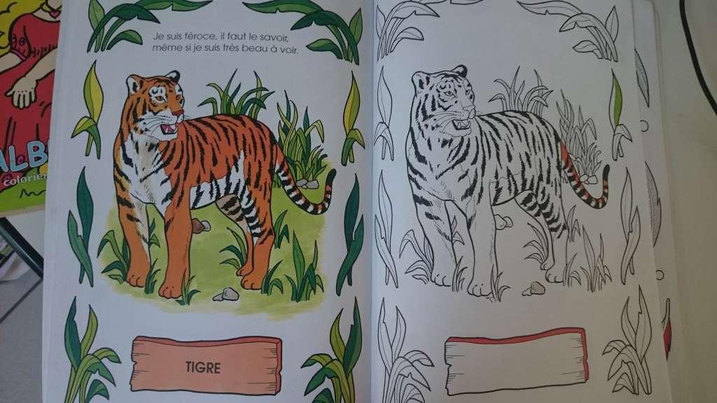 Livre De Coloriage Pour Enfants Sur Le Theme Des Animaux Sonstiges