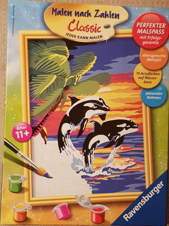 malen nachzahlen delfin
